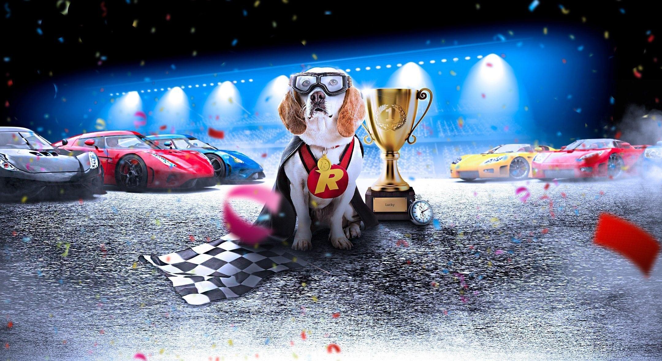 Rizk Race Casino Photo Manipulation